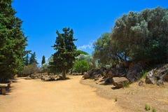 Agrigento - świątynie dolinne Zdjęcie Royalty Free