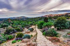 Agrigento, Σικελία ναός του Pollux καστόρων Στοκ Φωτογραφία