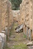 agrigento akraga olimpian ruin świątyni zeus Obrazy Stock