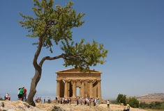 agrigento greektample Royaltyfri Bild