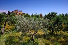 Agrigento nell'isola della Sicilia fotografie stock