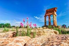 Agrigento, Sicily pollux rycynowa świątynia Obrazy Royalty Free