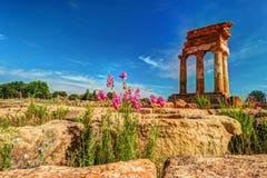 Agrigento, Sicily pollux rycynowa świątynia Zdjęcie Royalty Free