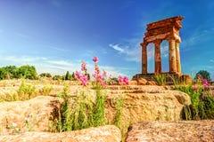Agrigento, Sicily pollux rycynowa świątynia Zdjęcia Stock