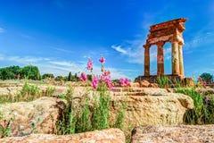 Agrigento, Sicily pollux rycynowa świątynia Fotografia Royalty Free