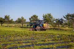 Agrikultura拖拉机耕种在领域的土壤 图库摄影