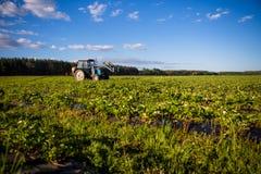 Agrikultura ciągnik kultywuje ziemię na polu zdjęcia royalty free