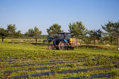 Agrikultura tractor cultivates the soil on the field.  Royalty Free Stock Images