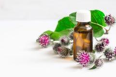 Agrimony łopianu Istotny olej W małej butelce Kwiatów liście i kolce Zdjęcie Stock
