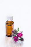 Agrimony burdock Essential oil In small bottle. Flowers spikes and leaves.  royalty free stock photos