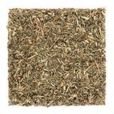 Agrimony Herb Leaf Stock Image