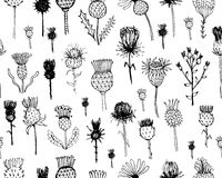Agrimony plants seamless pattern, sketch for your Stock Photography