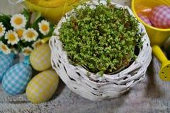 Agrião e coelho e ovos da páscoa frescos Imagem de Stock Royalty Free