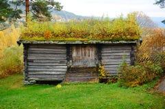 Agriocultural hus för norsk trälantgård Arkivbild