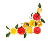 Agrios aislados Pedazos de limón, de cal, de pomelo rosado y de naranja aislados en el fondo blanco, con el recortes Foto de archivo libre de regalías