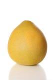 Agrios amarillos del pomelo Foto de archivo libre de regalías