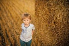 Agritourism, eco turystyka, wakacje, podróżuje Dzieciaki bawić się - szczęśliwy Obraz Stock