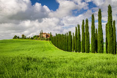 Agritourism in Tuscany with cypresses Royalty Free Stock Image