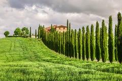 Agritourism w Tuscany z cyprysami Obraz Royalty Free
