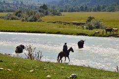 Agriulture w Kaukaz Zdjęcia Stock