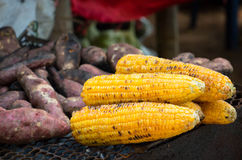 agro индустрия мозоли обрабатывая помадку стоковое фото rf