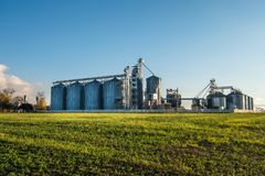 Agro-bearbeta v?xten f?r att bearbeta och silor f?r att torka lokalv?rd och lagring av jordbruksprodukter, mj?l, s?desslag och ko royaltyfri bild