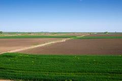 Agro fält med en väg Royaltyfri Bild