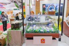 Agro powystawowa Złota jesień, rosjanin Zdjęcie Royalty Free