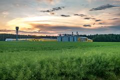 Agro-processing plant for processing and silos for drying cleaning and storage of agricultural products, flour, cereals and grain.  royalty free stock photography