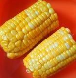 Agro-traitement de l'industrie Photo libre de droits