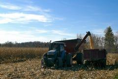 Agrobusiness Obraz Royalty Free
