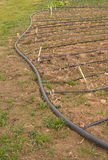 Drip irrigation Royalty Free Stock Photo