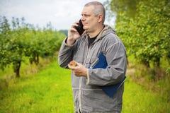 Agronom opowiada na telefonie w jabłczanym sadzie Obrazy Royalty Free