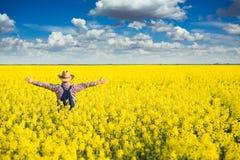 Agronom pozycja w polu kwitnienie kultywował rapeseed Fotografia Royalty Free