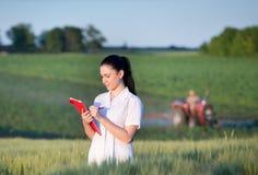 Agronom pozycja w pszenicznym polu Zdjęcie Royalty Free
