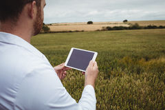 Agronom używa cyfrową pastylkę w polu Obraz Royalty Free