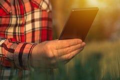 Agronom używa mądrze telefon kamery wiszącą ozdobę app zdjęcia royalty free