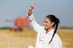 Agronome de femme dans le domaine de blé Photographie stock