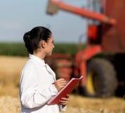 Agronome de femme dans le domaine de blé Image libre de droits