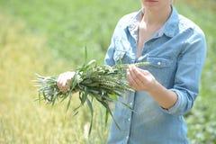 Agronome de femme se tenant dans le domaine de blé vert avec des oreilles de whea images stock