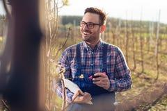 Agronome examiner les poiriers de floraison le verger, et en écrivant des données photos stock
