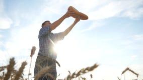 Agronome réussi dans le domaine du blé Temps de moisson lifestyle clips vidéos