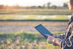 Agronomen Using en minnestavla för läste en rapport på det åkerbruka fältet arkivfoton