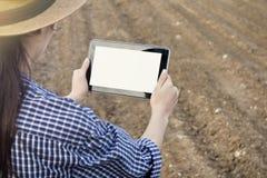 Agronomist используя цифровой планшет в поле земледелия стоковая фотография