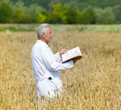 Agronomist in field Stock Images