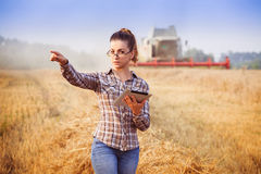Agronomist girl in glasses controls the harvesting. Agronomist girl in glasses with hair tied in a ponytail with tablet controls the harvesting in wheat field Stock Photography
