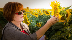 Agronomist in sunflower field Royalty Free Stock Photography