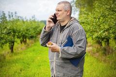 Agronomist talking on the phone in apple orchard Royalty Free Stock Images