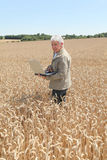 Agronomist in wheat field Stock Photo