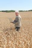 Agronomist in wheat field Stock Photo